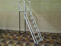 7 Step SPECIAL Ladder